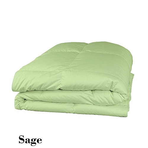 (Luxury 600 Thread Counts 200 GSM Fiber Fill 1pc Comforter + 4pc Sheet Set Twin Extra Long Size Sage Solid 100% Egyptian Cotton- by PARADISEHOUSE)