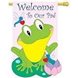 Cheap Friendly Frog Decorative Banner
