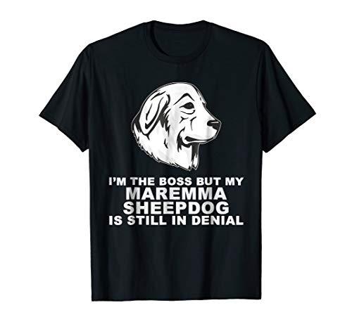 Funny Maremma Sheepdog Dog ()
