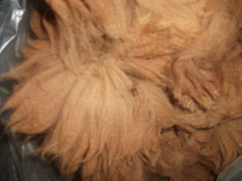 Spinning Alpaca Fiber - Alpaca fibers hand spinning fleece wool reddish brown