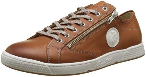 Sneakers marrone H2d Jay basse uomo Pataugas Caramel Ux4qzBCnw