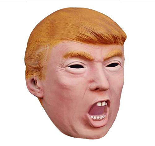 Halloween Costume Donald Trump Celebrity Mask,Cardboard Face and Fancy Dress Mask (Style D)