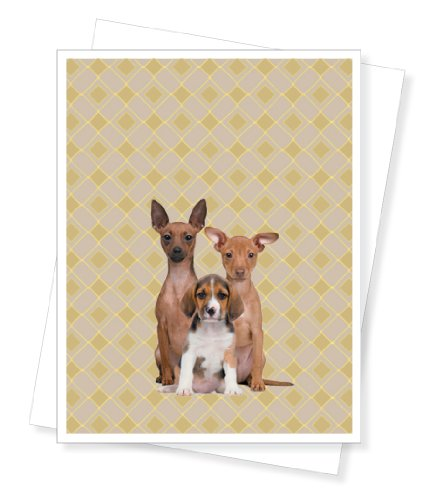 Three Sorry Dogs, Apology, Pet Sympathy - Greeting Card