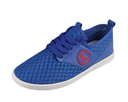 Martial Arts Traditional Mesh Ventilation Breathable Comfort Kung Fu Slippers Non Slip Chinese Tai-Chi Shoes Blue 41