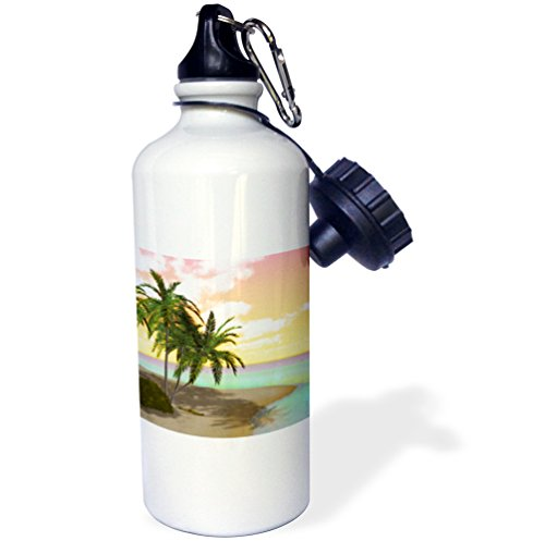 3dRose Colorful Sunset Island Beach Scene with Palms-Sports Water Bottle, 21oz (wb_181698_1), 21 oz, Multicolor ()