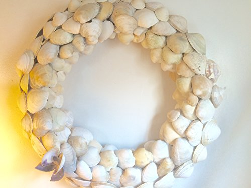 Clam-Shell-Wreath-with-Wampum-Bow-19-Inches-with-Surf-Tumbled-Cape-Cod-Seashells-with-Hanging-Hooks-Large-Shell-Wreath-Coastal-Wall-Hanging