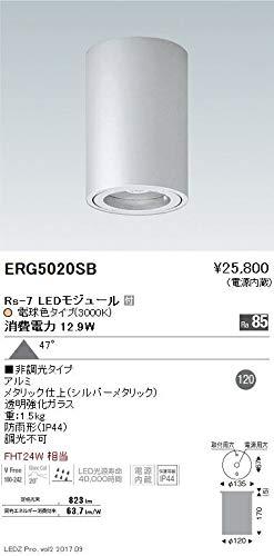 ENDO LED軒下用シーリングダウンライト 防雨形 電球色3000K 超広角 非調光 FHT24W相当 ERG5020SB(ランプ付) B07HQ27QF3