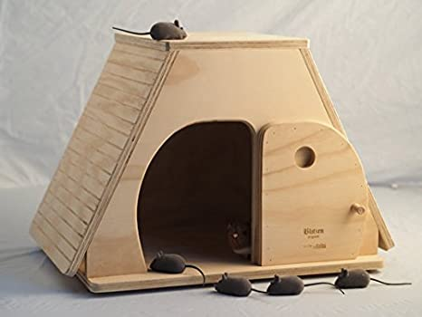 Keope Talla XL, casita Indoor Caseta para gatos, Blitzen Made in Italy 100%: Amazon.es: Jardín