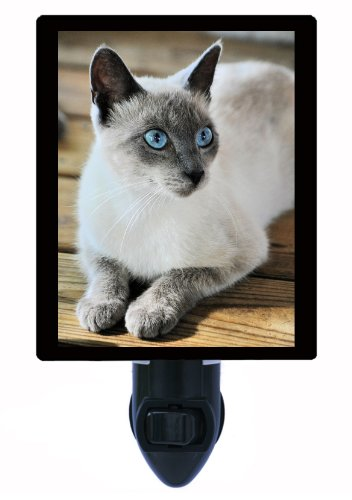 Cat Night Light - Old Blue Eyes - Siamese Cat (Siamese Cat Lamp)