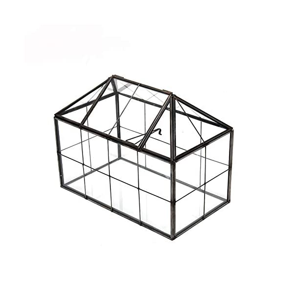 Xcman Large Tabletop Greenhouse House Shape Glass Terrarium Succulent Plant Terrarium Clear Glass Terrarium 93x75x53