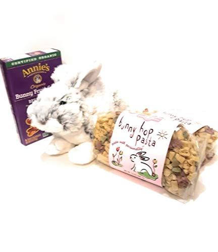 Easter Bunny Bundle- Bunny Hop Pasta, Bunny Fruit Snacks and Plush Bunny Companion