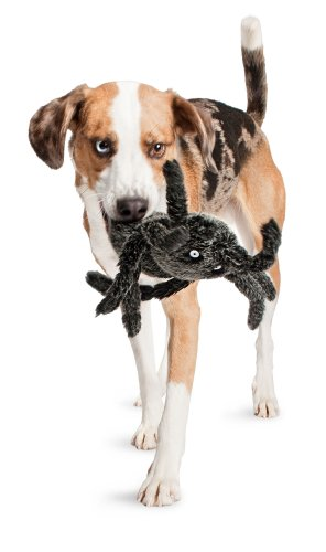 Petsafe Pogo Plush Spider Dog Toy, Large