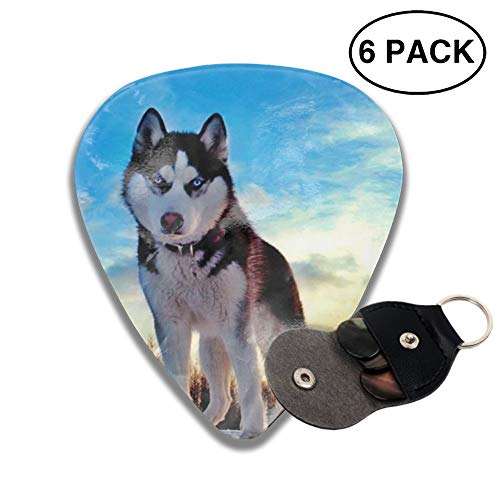 (6 Pack Cool Siberian Husky Guitar Picks, Unique Guitar Gift For Bass, Electric & Acoustic Guitars Includes 0.46mm, 0.71mm, 0.96mm)