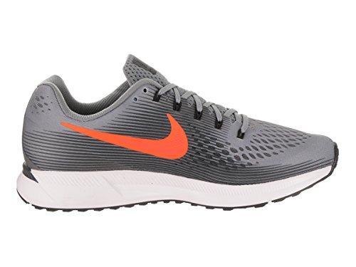 Nike Air Zoom Pegasus 34 Herren Laufschuhe Cool Grey / Tart Anthrazit