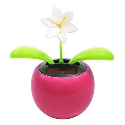 Warm Fuzzy Toys Solar Dancing Flower - Jasmine: Toys & Games