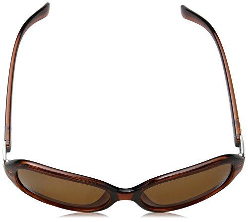 Claire Sol para Eyelevel Mujer Gafas Marrón de xOBdd8wa