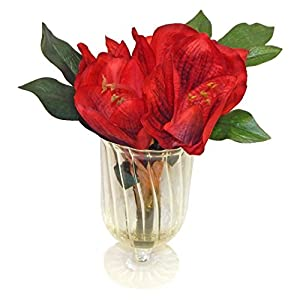 Ella and Lulu Real Touch Amaryllis in Glass Floral Arrangement, 13-in, Red 7