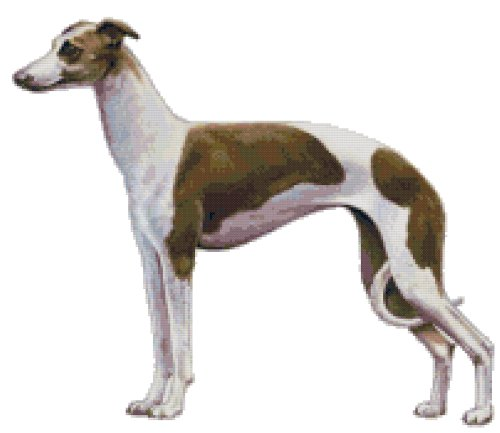 Italian Greyhound Dog Counted Cross Stitch Pattern
