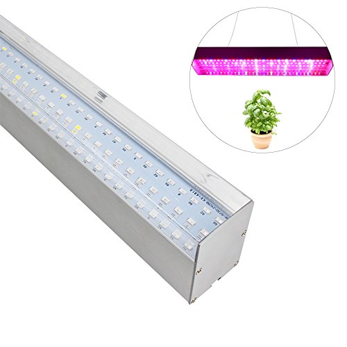 7 Band Led Lights