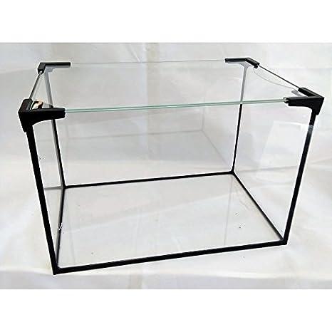 Cría de eslabón sueltas de foltis Acuario Platillos Incluye protectora de vidrio; Rectangular de Cristal