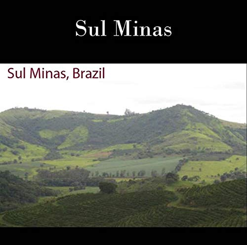 22 lbs BRAZIL SUL MINAS NATURAL PROCESS SPECIALTY AAA GREEN COFFEE by Invalsa Coffee (Image #2)