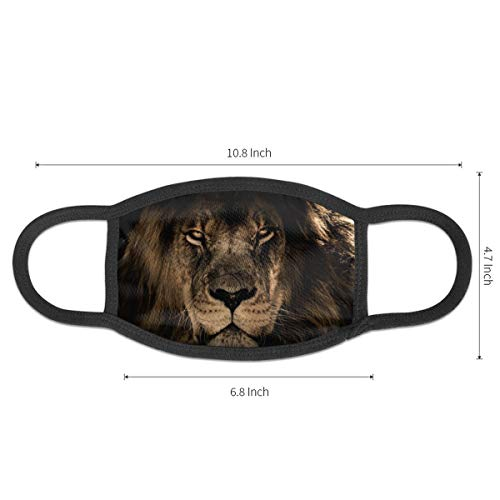 African Lion Face Unisex Mouth Mask Washable Reusable Dustproof Face Masks For Outdoor Cycling Shopping
