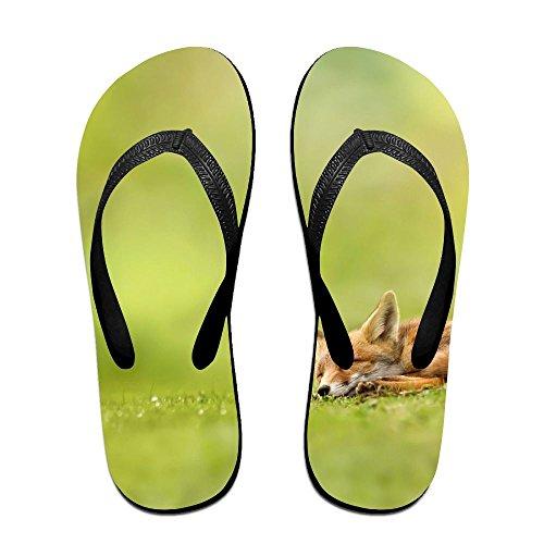 (Unisex V Flip Flops Fox Sleeps And The Grass Scatter Personalized Summer Slipper)
