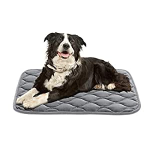 Amazon.com: AIPERRO Dog Bed Mat 30/36/42/46 Inch Crate Pad ...