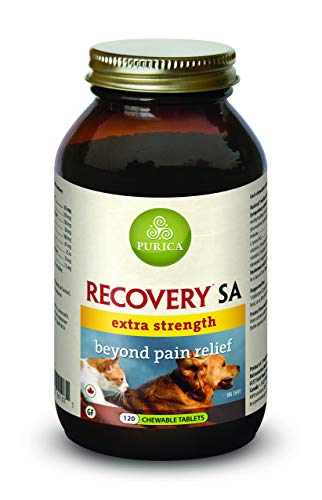 Purica Recovery SA Extra Strength - Beyond Pain Relief, 120 Chewable Tablets