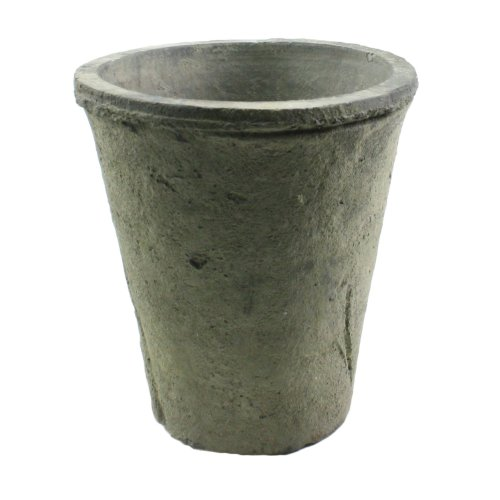 HomArt Rustic Terra Cotta Rose Pot, Small, Moss Grey, 1-Count