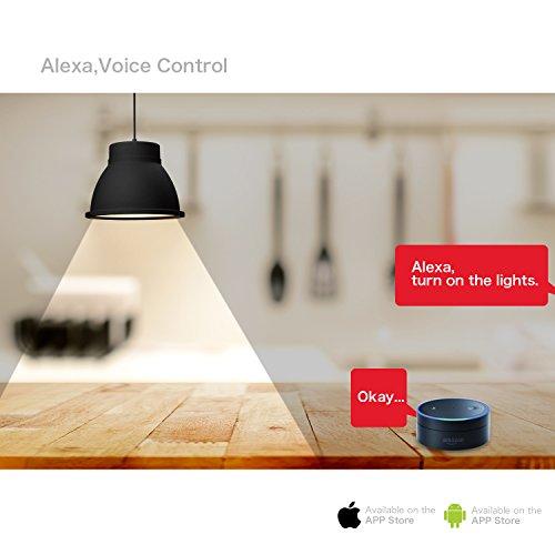 smart light bulb wifi light bulb dimmible led light bulbs a19 60w equivalent led smart light. Black Bedroom Furniture Sets. Home Design Ideas