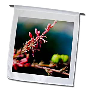 Jos Fauxtographee Realistic - A Close up of a beautiful blossoming branch in Mesquite, Nevada - 18 x 27 inch Garden Flag (fl_59535_2)