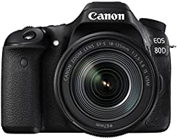 Canon EOS 80D 24.2MP Digital SLR Camera (Black) with EF-S 18-135mm f/3.5-5.6 Image Stabilization USM Kit