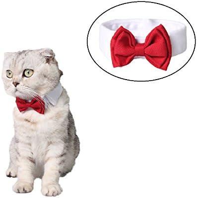 Stock Show - Corbata para Perro o Gato de algodón Formal, para ...