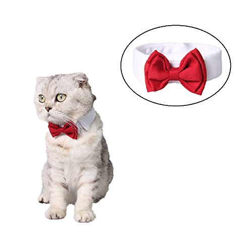 Stock Show Pet Dog Cat Classic Formal Cotton Bow Tie Neck Tie Wedding Party Tuxedo Dog Collar, S, Red (Cat Tie Christmas Bow)