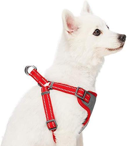 Essential Pastellfarbenes reflektierendes Hundegeschirr UMI