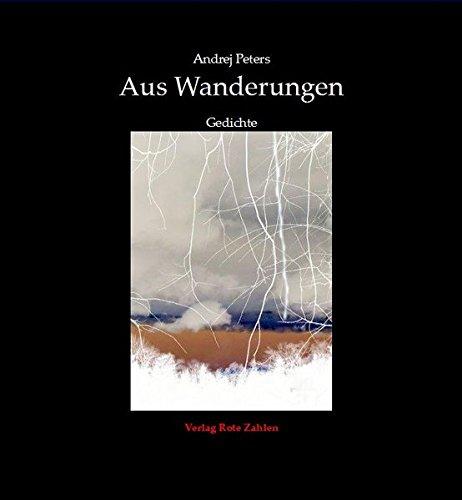 Aus Wanderungen: Gedichte (edition rote zahlen)