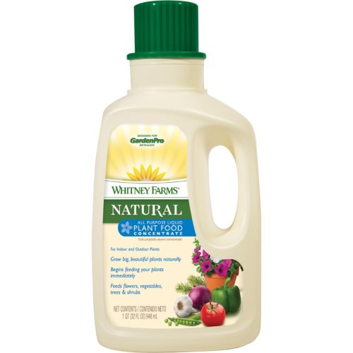 Whitney Farms 109109 Natural All Purpose Liquid Plant Food Concentrate, 8-0-0, 32-Ounce