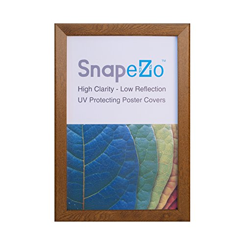 Wood Finish Movie Poster Frame 16x20 Inches, 1.25' SnapeZo Profile, Front Loading Snap Display, Wall Mount, Professional Series