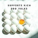 Manna Pro Omega Egg Maker | Formulated with