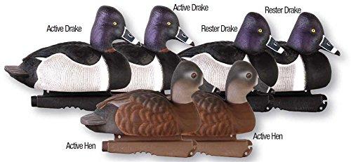 Greenhead Pro Grade Decoy Ring Necked Ducks