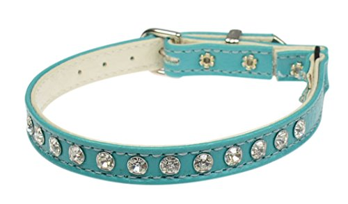 Jeweled Cat Safety Collar - Evans Collars Jeweled Cat Safety Collar with Elastic, Size 10, Vinyl, Turquoise