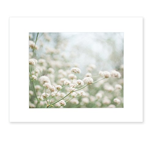 Dreamy White Country Wall Art, Rustic Farmhouse Floral Decor, Botanical Wild Flower Picture, 8x10 Matted Print, 'Ball-Balls of (White Flower Photograph)