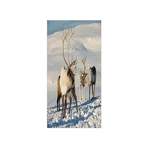 (Decorative Privacy Window Film/Reindeers in Natural Environment Tromso Northern Norway Caribou Antler Wildlife Decorative/No-Glue Self Static Cling for Home Bedroom Bathroom Kitchen Office Decor)