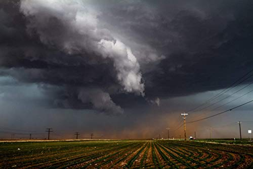 Storm Photography Wall Art Print - Picture of Thunderstorm Pushing Up Dirt in Field in Texas Panhandle Western Weather Decor 5x7 to 30x45