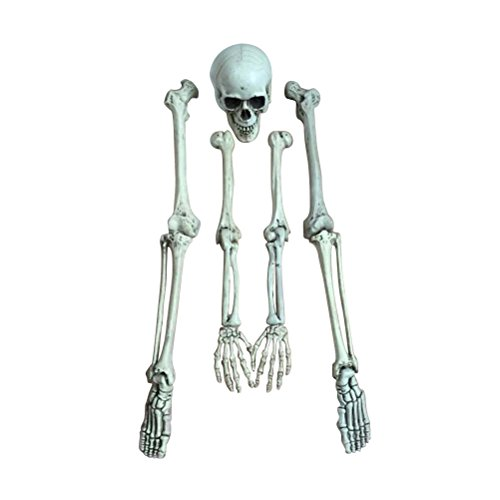 LUOEM Simulation Resin Human Skeleton Model Tracing Medical Teaching Prop Scary Halloween Decoration Statue Haunted House Bar Costume Party Prop Decor Prank Toy -