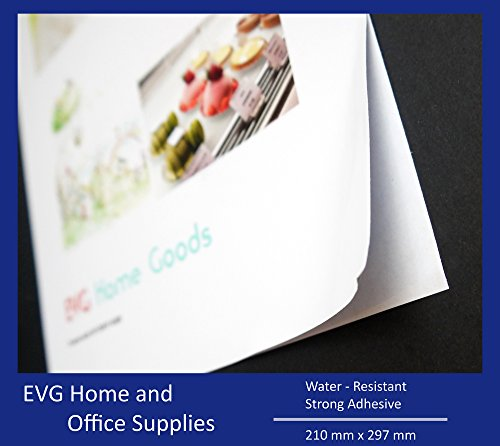 EVG Home & Office Supplies 10 Sheets A4 Quality Self Adhesive Photo Paper White Glossy Finish/Sticky Back Label Printing Paper Sheet Water-Resistant ()