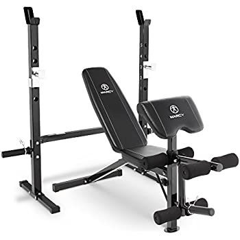 Amazon Com Gold S Gym Xrs 20 Olympic Bench Weight