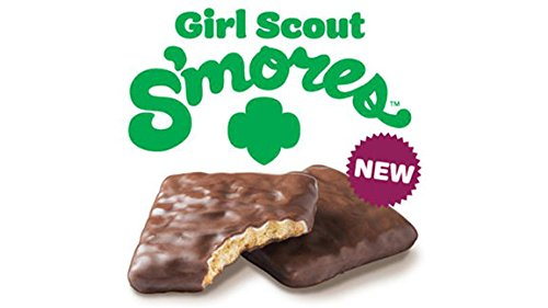 Image result for girl scouts s'mores