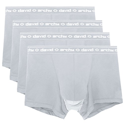 43974eb31 David Archy Men s 4 Pack Underwear Micro Modal Separate Pouches Trunks with  Fly